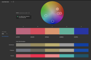 Show how Adobe Color Accessibility tool works to see how your color theme will look to those that are color blind.